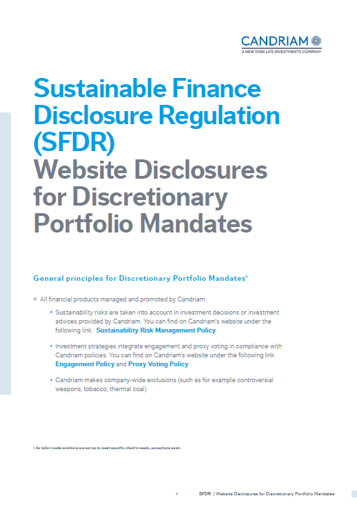 High level Disclosure - Discretionary Portfolio Mandates